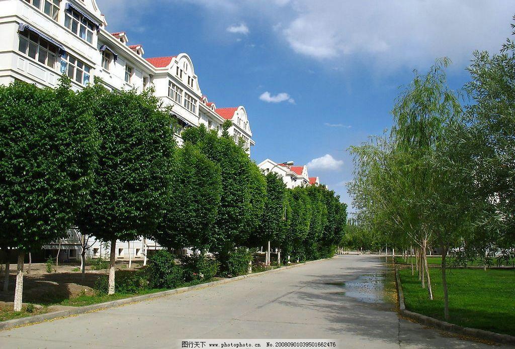 生活小区 建筑 树木 道路 蓝天 白云 绿色 家园 建筑园林 园林建筑