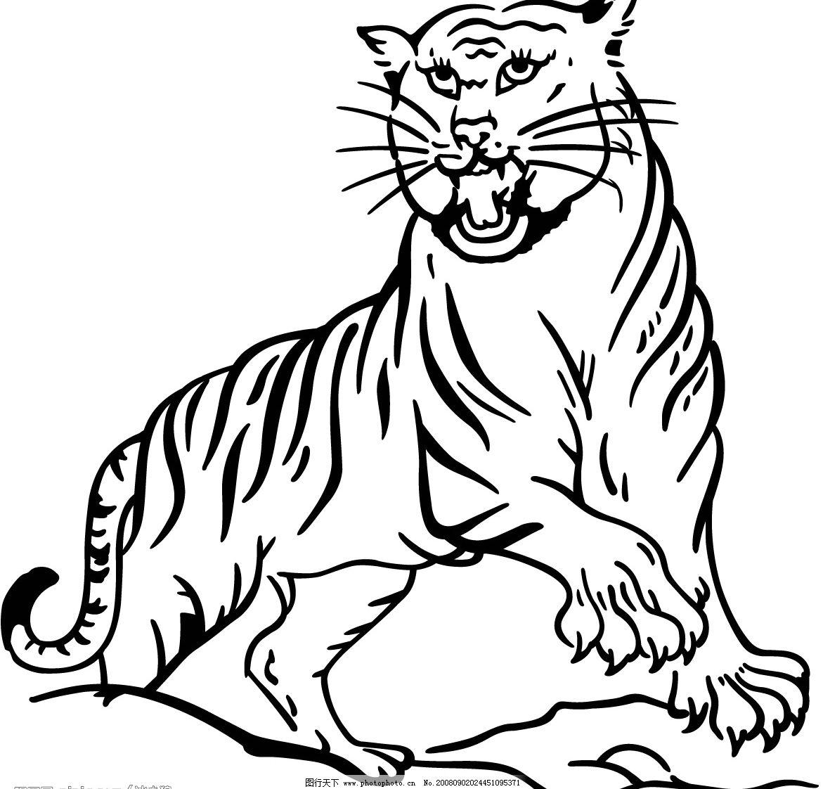 老虎 生物世界 野生动物 矢量图库 eps