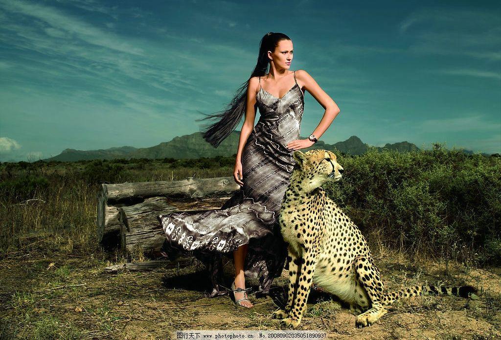 野生动物世界广告