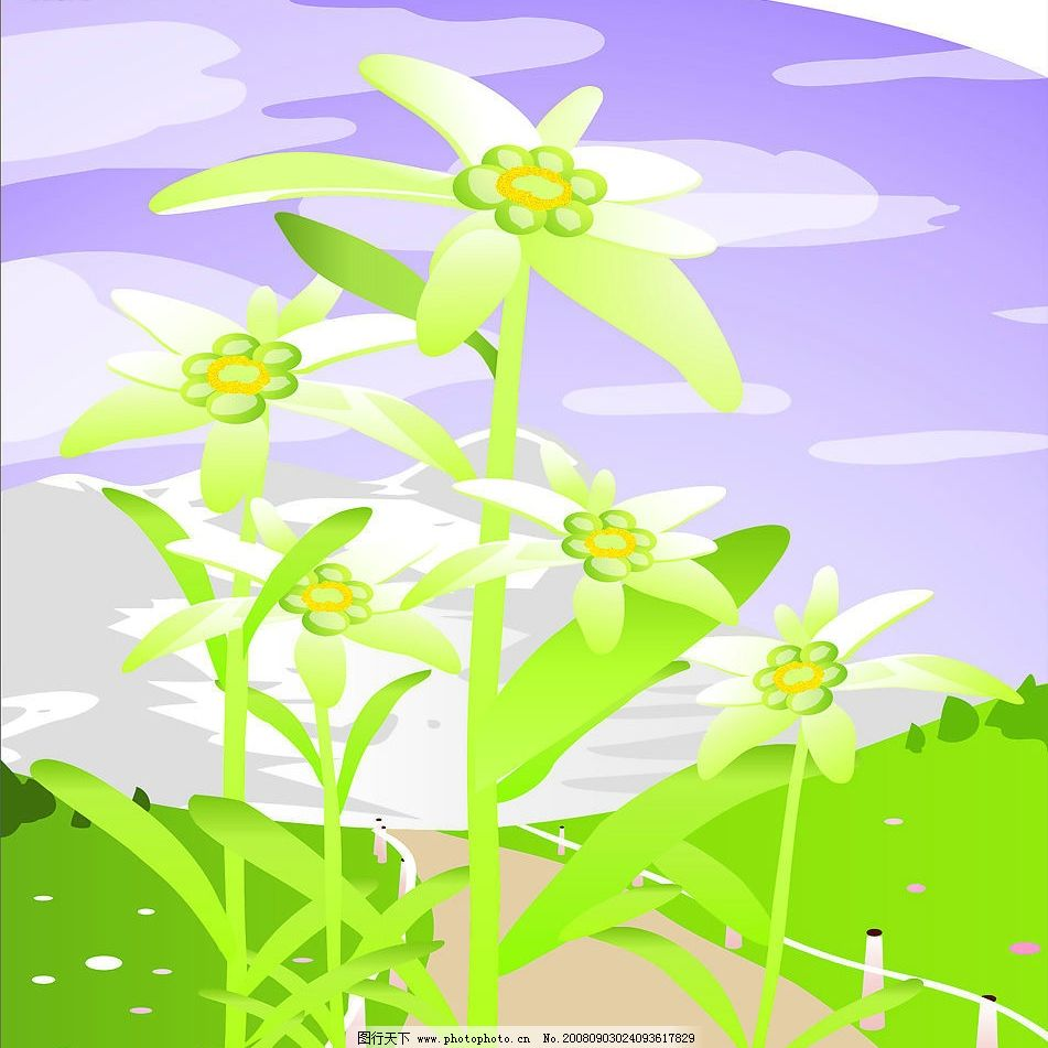 春天风景 蓝天 白云 花朵