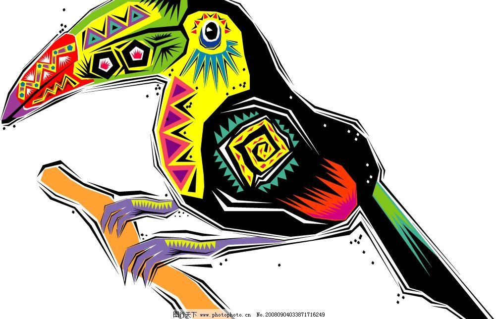 手绘鹦鹉eps图片