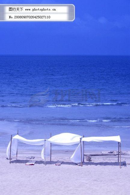 手机图片海边的风景花