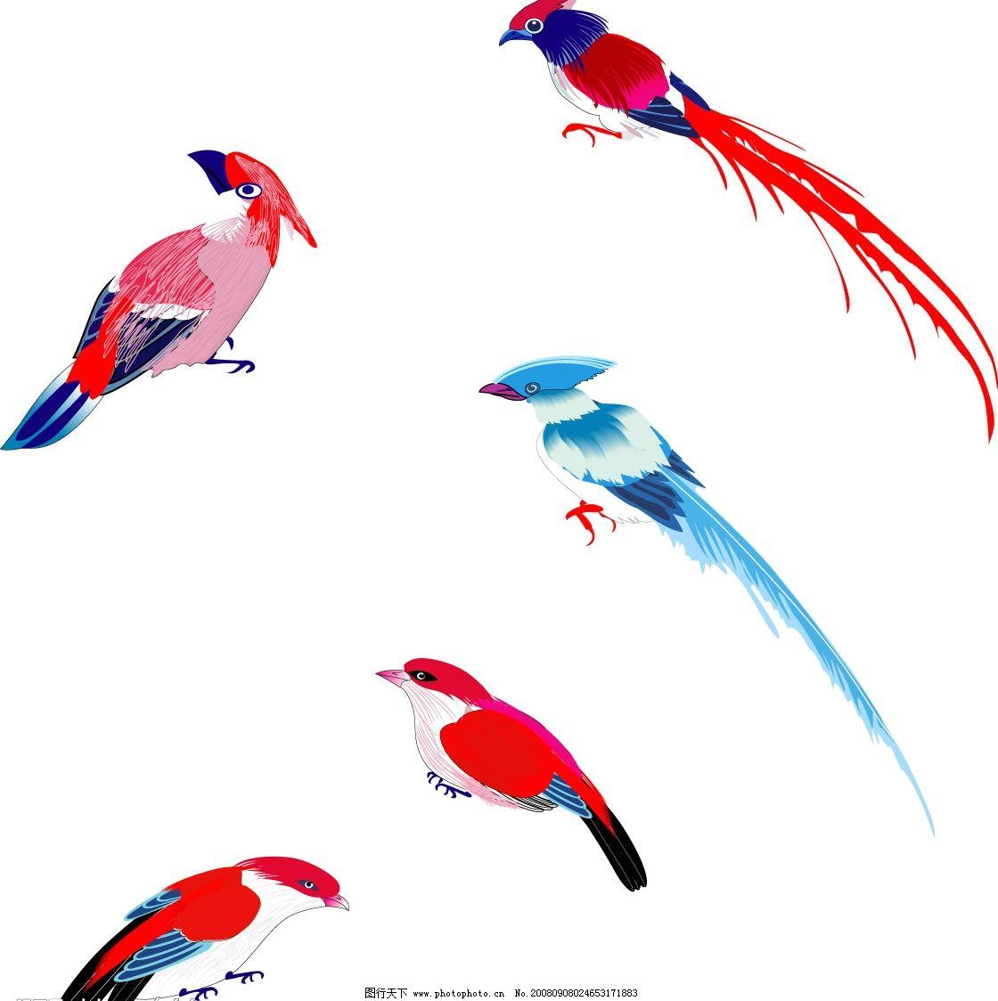 小鸟 生物世界 绘画 鸟类 矢量图库 cdr