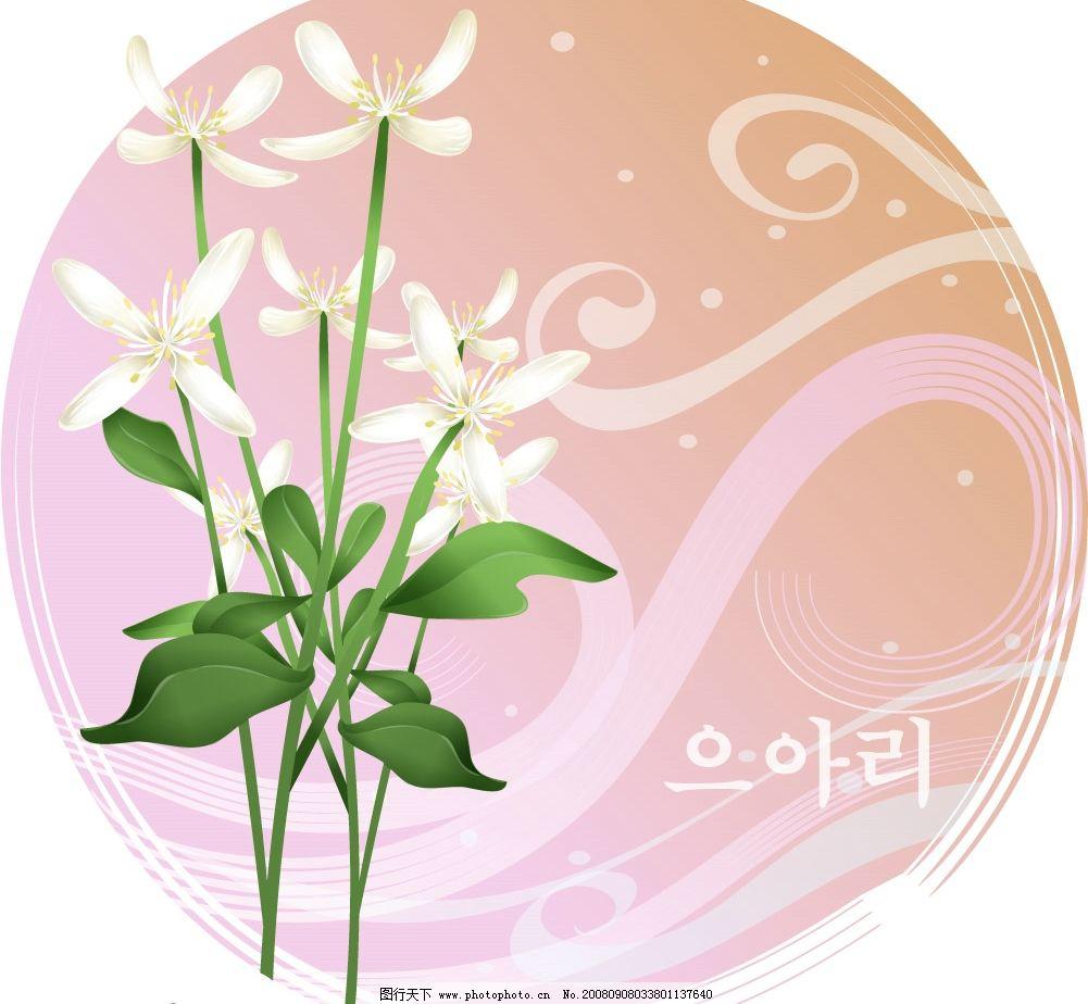 矢量花卉图片_其他图片素材