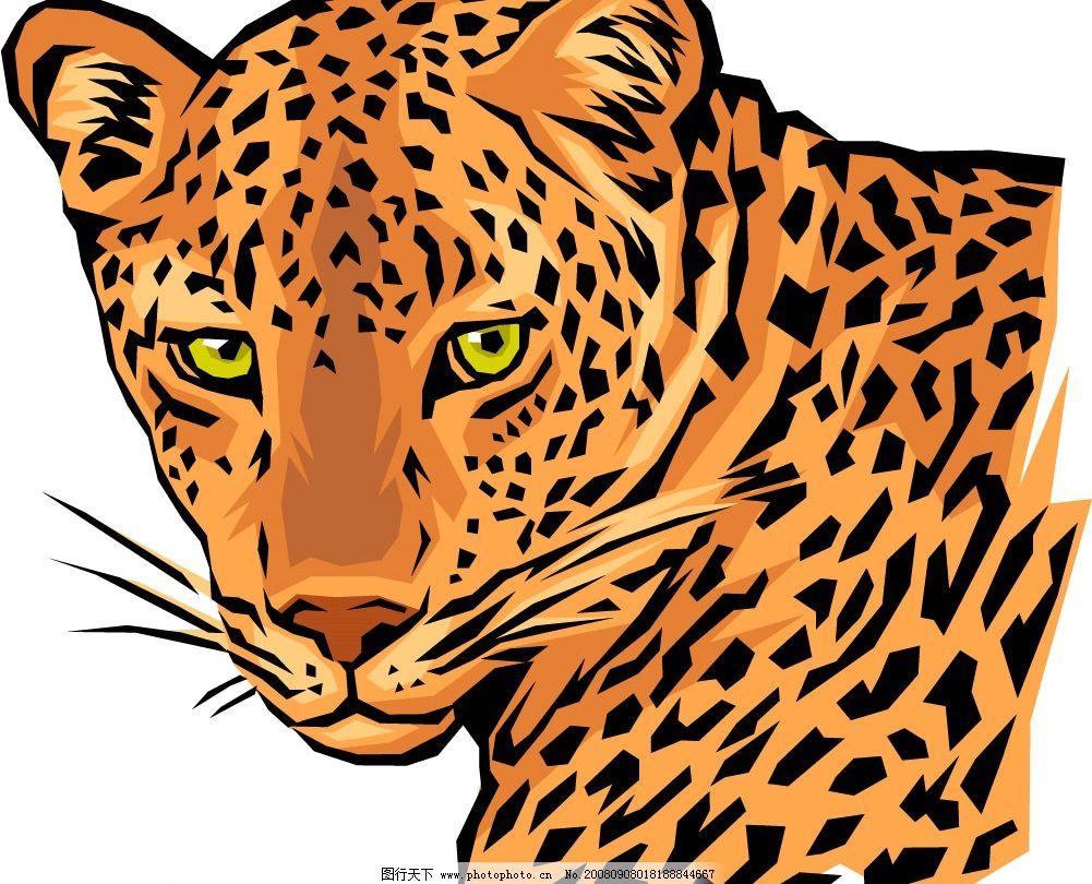 豹子头 生物世界 其他生物