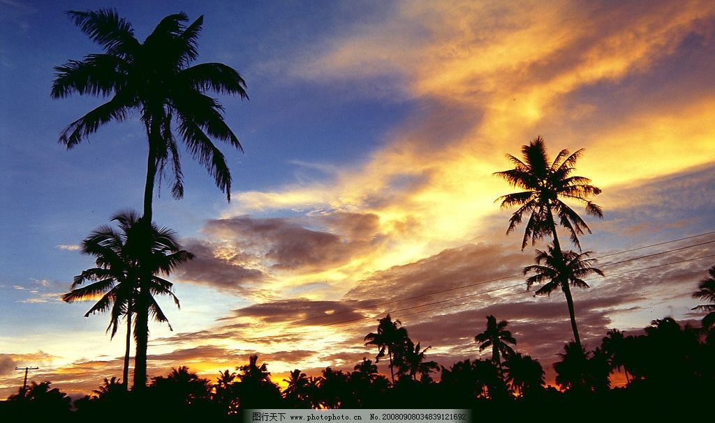 海南风光 海南 海边 椰树 夕阳 黄昏 残阳 剪影 自然景观 自然风景