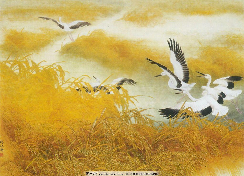 稻香季节 稻谷 白鹤 仙鹤 文化艺术 绘画书法 国画