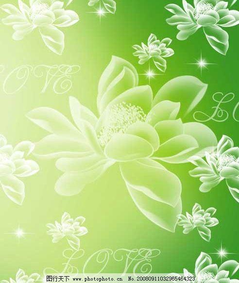 暗花漂浮 白色荷花 闪烁的星星