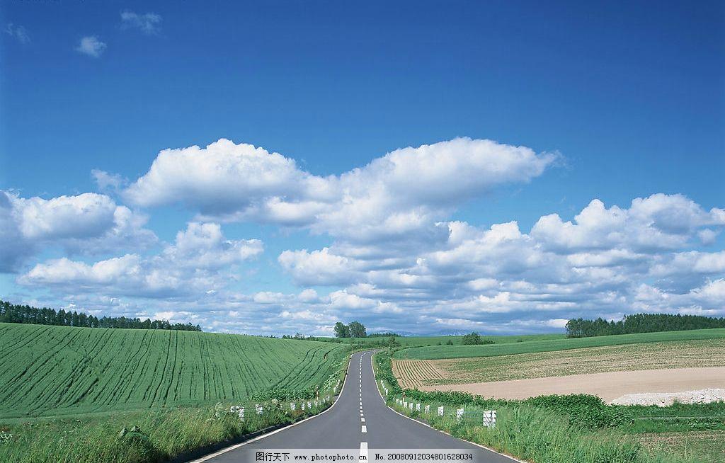 公路美景 公路 草 树木 蓝天 白云 自然景观 自然风景 摄影图库 350