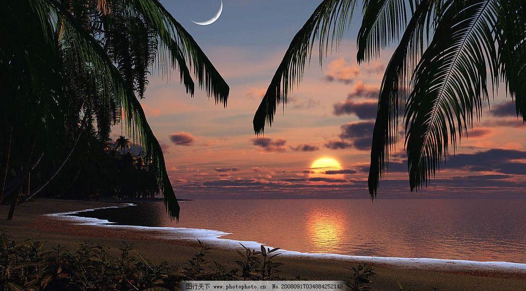 海滨黄昏 海滨 大海 黄昏 沙滩 海滩 椰树 月亮 日出 设计素材 背景图