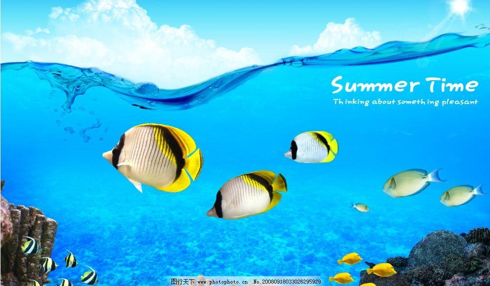海底世界 海水 鱼 礁石 蓝天 白云 阳光 psd分层素材 韩国分层素材 源