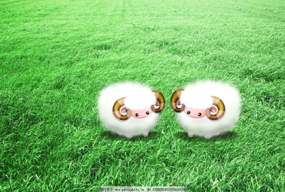 可爱的小绵羊图片