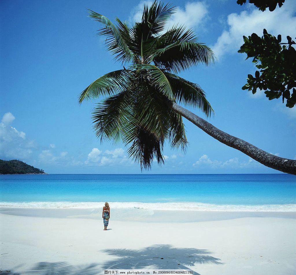 海滩 大海 椰树 蓝天 旅游摄影 国外旅游 摄影图库