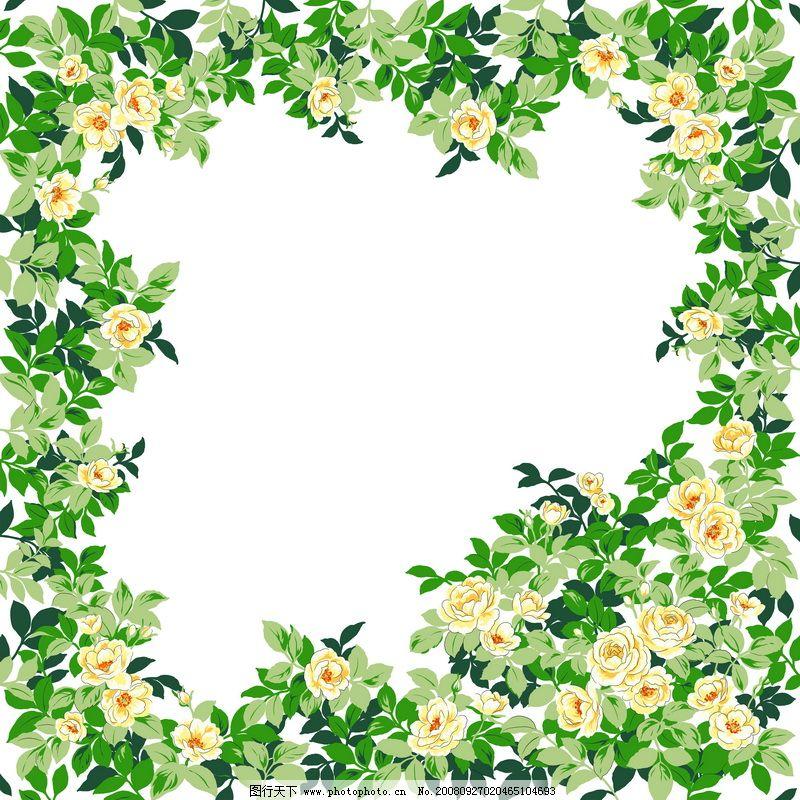 花卉边框0027 精品花纹边框模板